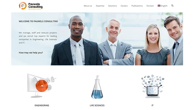 Pauwels Consulting - Lincelot Web Design