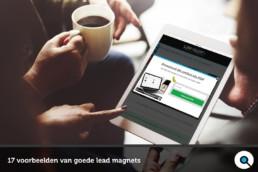 17 voorbeelden van goede lead magnets
